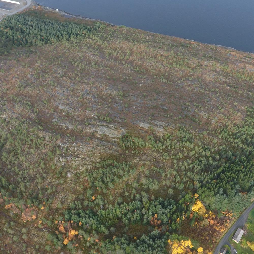 rockfjord 1